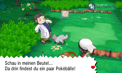 https://files.pokefans.net/images/spiele/oras/screenshots/5778.png