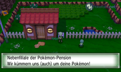 Die Pokémon-Pension