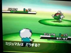 Basurao (Pokémon aus Schwarz-Weiß