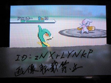 Kampf-Pokémon Dokkora aus Schwarz-Weiß