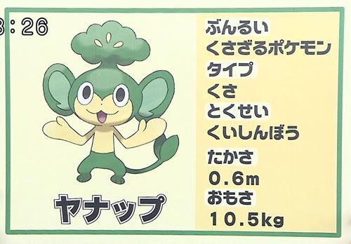 Pokémon Yanappu aus der schwarzen und weißen Edition