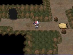 Der richtige Weg zu Terrakiums Höhle