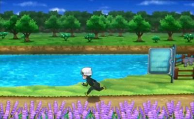 Ein neues Pokémon hinter dem Zaun?