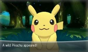 Ein wildes Pikachu