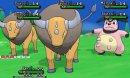 Tauros | Screenshot | Eine Tauros Herde mit einem Miltank in der Massenbegegnungen.
