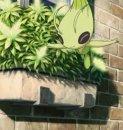 Celebi | Pokémon-Film | Film 13 | Celebi lässt die Blumen sprießen