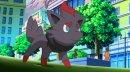 "Zorua | TV-Serie | Zorua in Episode 697 ""Film ab! Die Legende des Pokémon-Ritters!""."