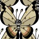 Vivillon | Artwork | Pokémon Global Link Artwork zum Sandmuster