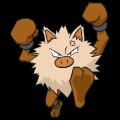 Pokémon Global Link Grafik von Rasaff