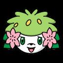 Bild von Shaymin aus Pokémon Link Battle
