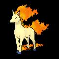 Gallopa-Sprite (XY, normal, vorne)