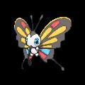 Papinella-Sprite (XY, normal, vorne)