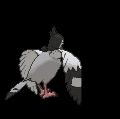 Navitaub-Sprite (XY, normal, Rückseite)