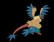 Aeropteryx-Sprite (XY, normal, Rückseite)